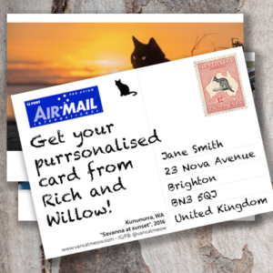 Purrsonalised Postcards