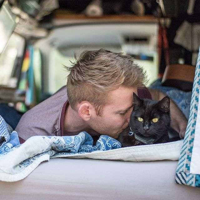 b5f9c5827378f3 Rich - Van Cat Meow