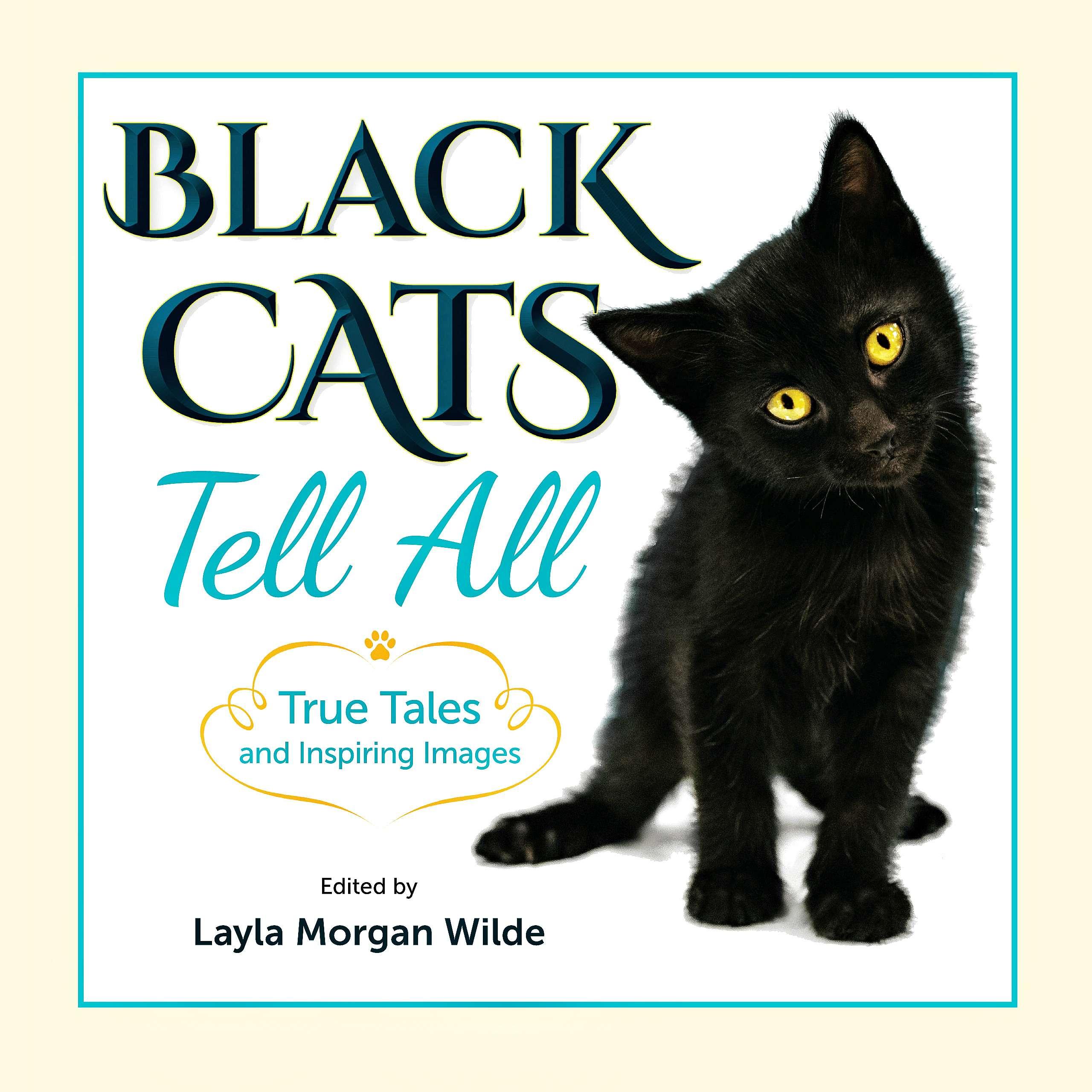 9c37e7f87e Black Cats Tell All  True Tales and Inspiring Images - Van Cat Meow